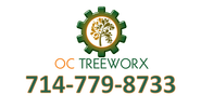 Tree Trimming | Tree Removal | Tree Care | Tree Service Yorba Linda, CA